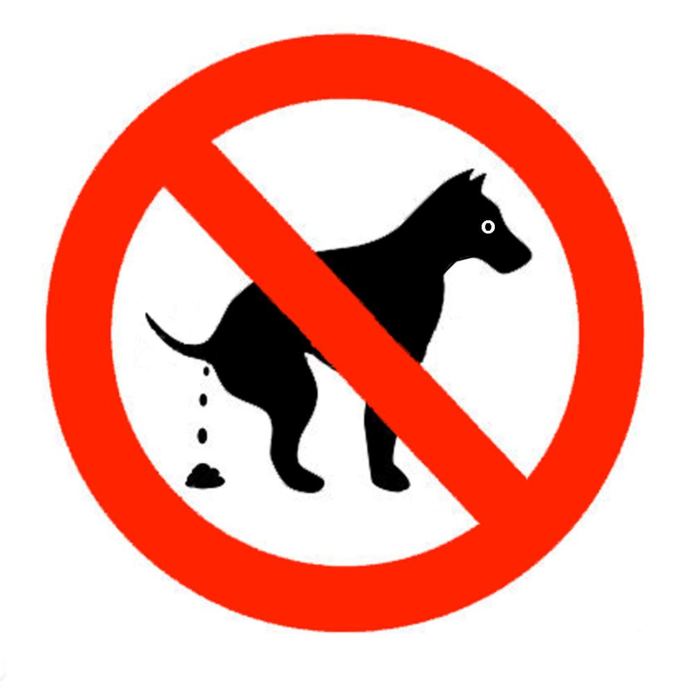картинка собакам не гадить советтик