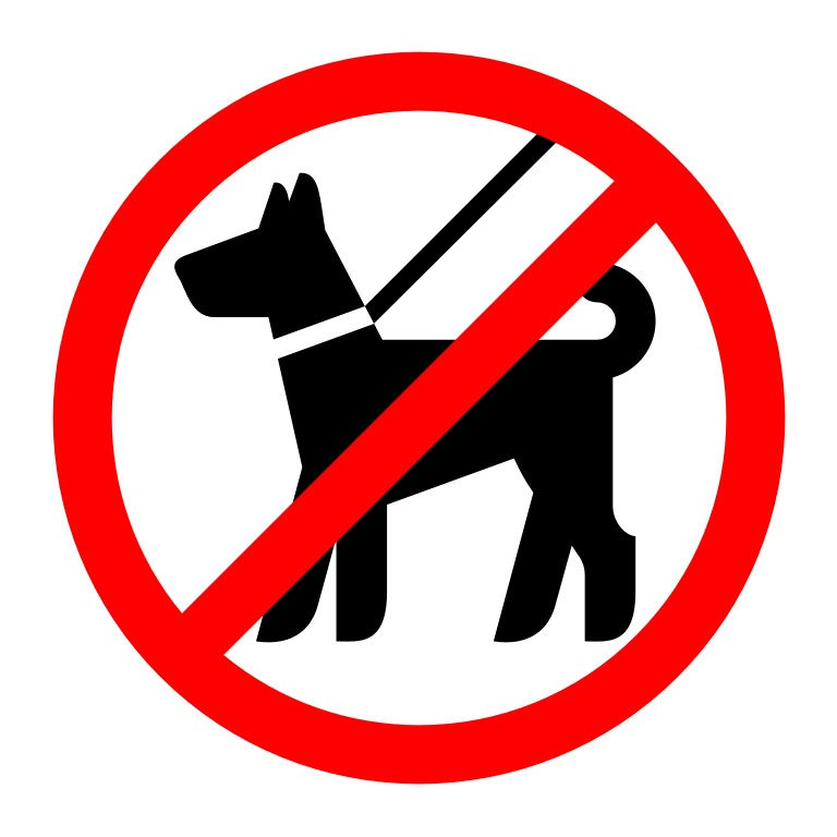 Вход с собаками запрещен табличка картинка, открытка