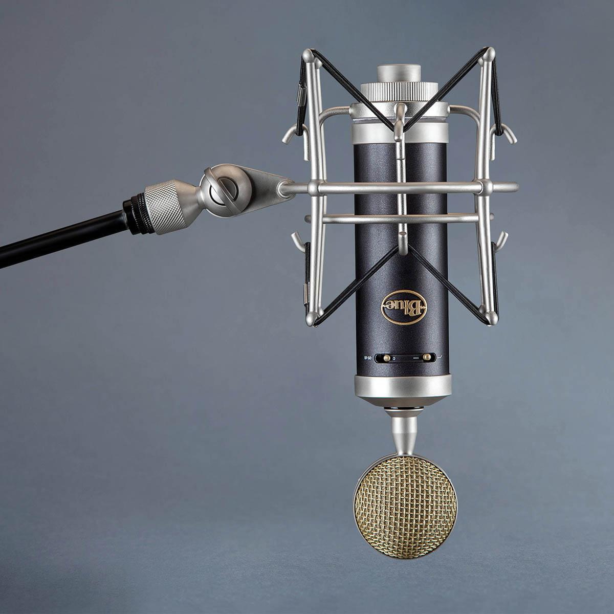 Микрофон конденсаторный BLUE MICROPHONES Baby Bottle SL купить цена отзывы доставка