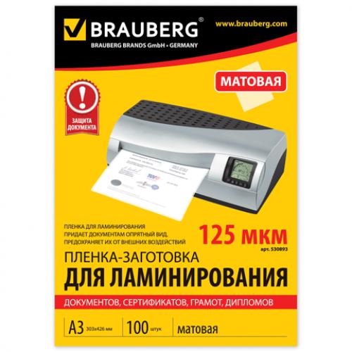 Купить Пленки-заготовки для ламинирования Fellowes комплект 100 шт., для формата А4, 125 мкм, FS-53074 в Санкт-Петербурге с доставкой