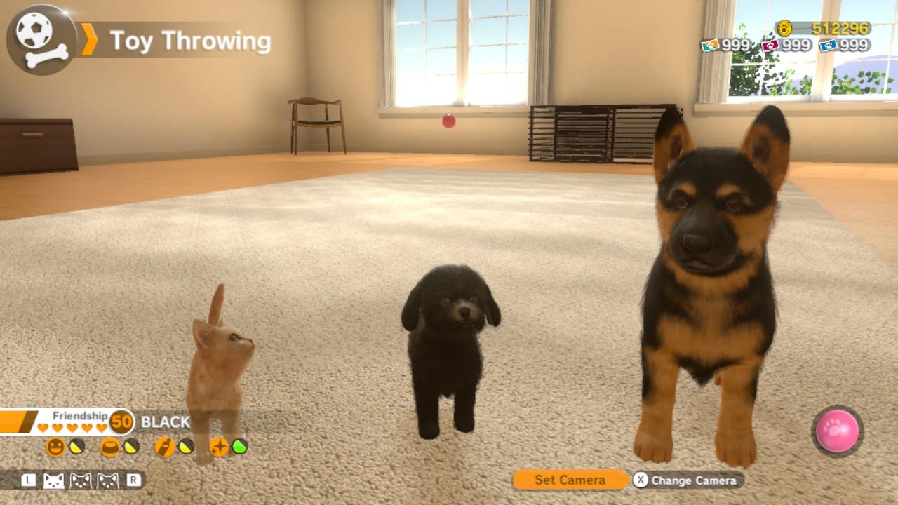 Little Friends Pet Memorial – Pet Aftercare Services