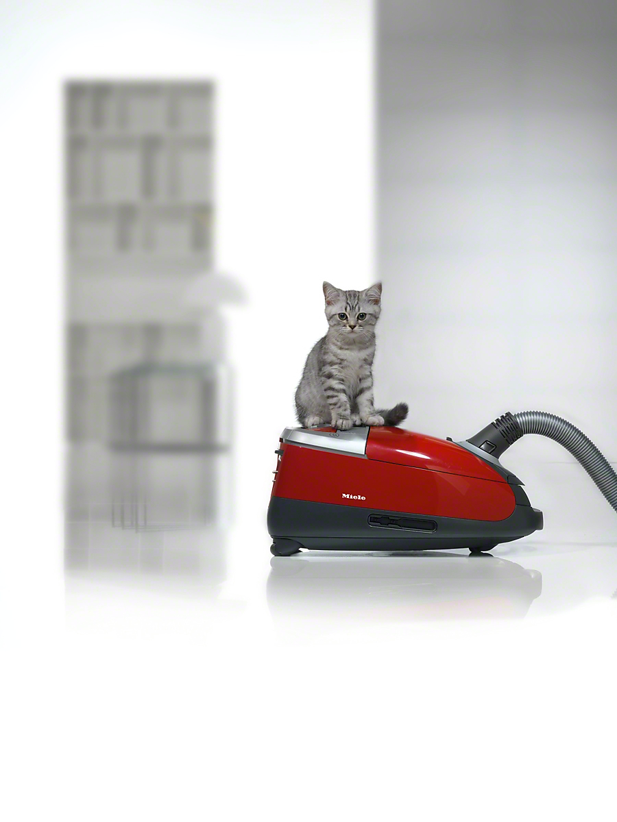 Miele Cat & Dog C3 Complete | Miele Pet Vacuum Cleaner